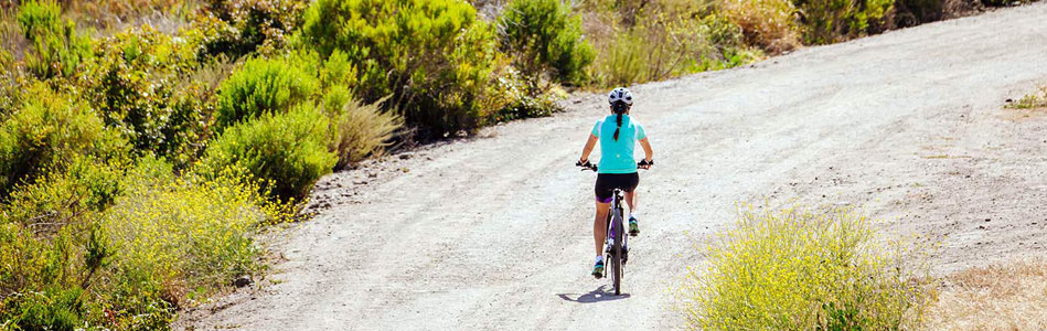 Liv dual sport bikes for women are available on sale at Talbot's Cyclery in San Mateo
