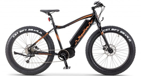 """Fifield Bikes Rogue Wave Electric Fat Bike"""