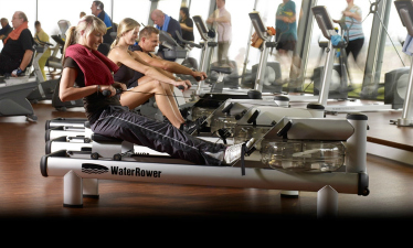 Rowing machines at Scheller's Fitness and Cycling