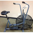 Schwinn AirDyne Comp - Refurbised