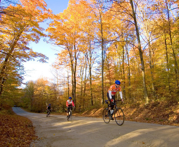 Champaign Cycle 2019 Pumpkin Pie Ride