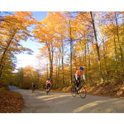 Champaign Cycle Pumpkin Pie Ride - Oct. 9, 2016