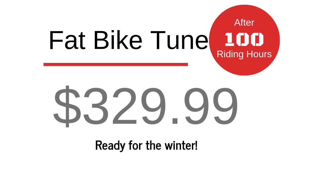 Fat Bike Tune - $329.99