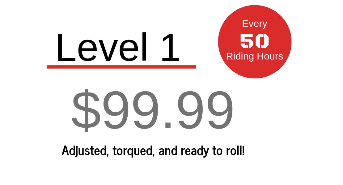 Level 1 Tune Up - $99.99