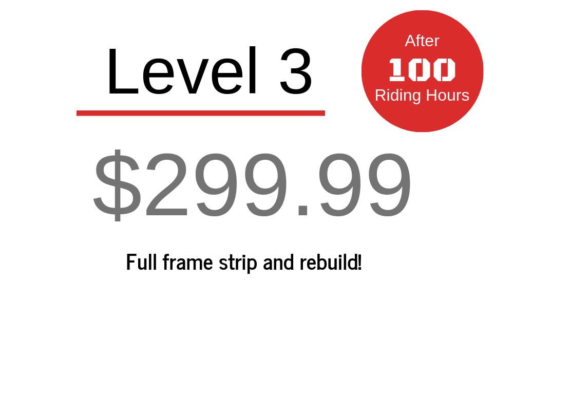 level 3 $299