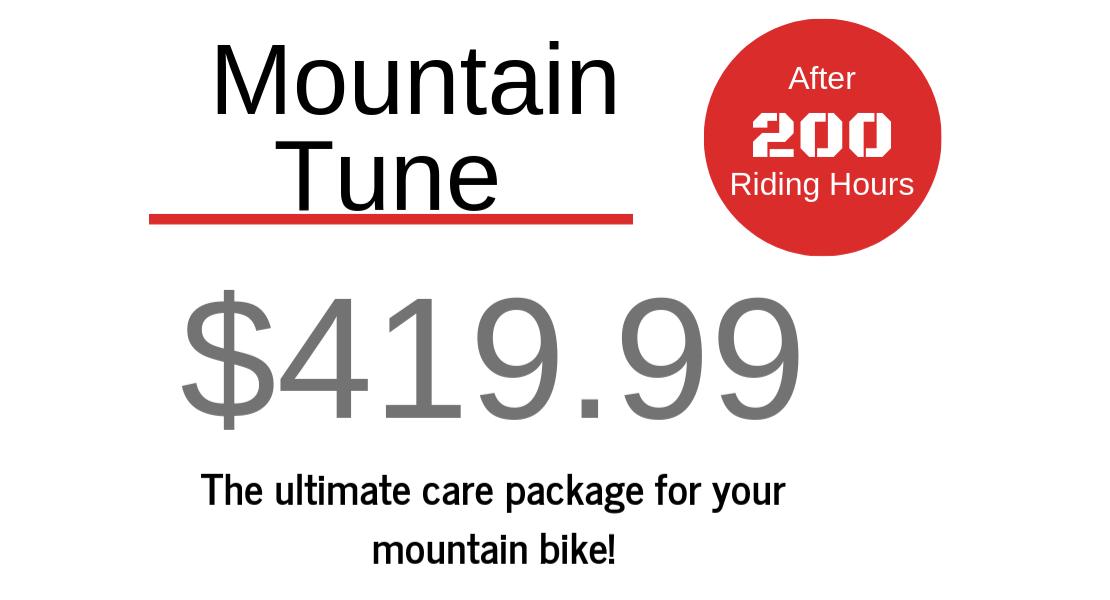 Mountain Tune - $419.99