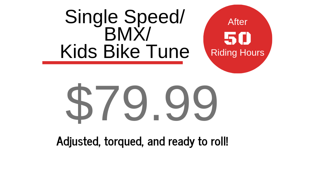 Single Speed/Kid/BMX $79