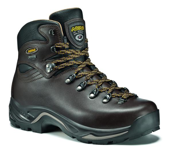 Asolo TPS 520 GV EVO GTX - Women's Color: Chestnut