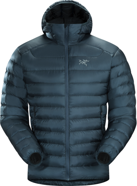 Arcteryx Cerium LT Hoody - Men's Color: Labyrinth