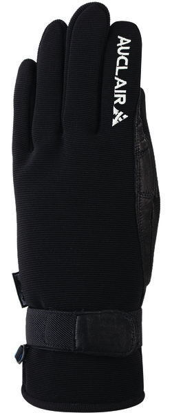 Auclair Skater Glove - Women's