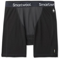 Smartwool Merino Sport 250 Wind Boxer Brief - Men's