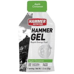 Hammer Nutrition Hammer Gel - Apple Cinnamon - Single Serving (33g)