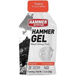 Hammer Nutrition Hammer Gel - Tropical - Single Serving (33g)