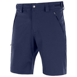 Salomon Wayfarer Short - Men's