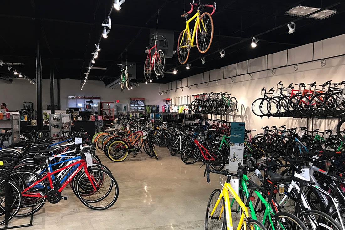 Bike World 281 Trek Bikes