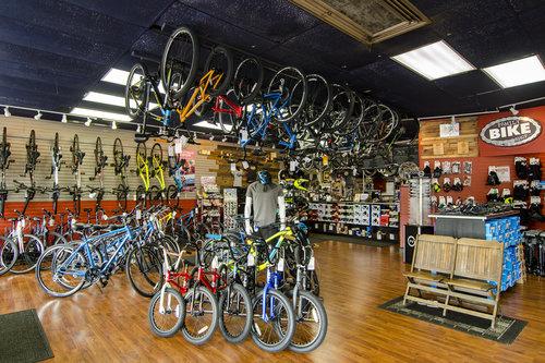 More bikes in showroom