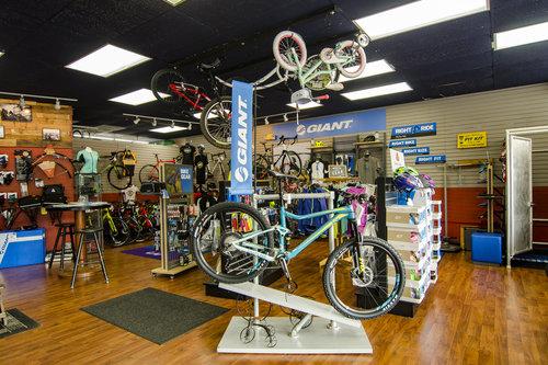 Bike display at Family Bike Shop