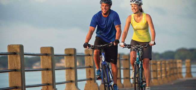 Hybrids and Comfort bikes are great for family fun!