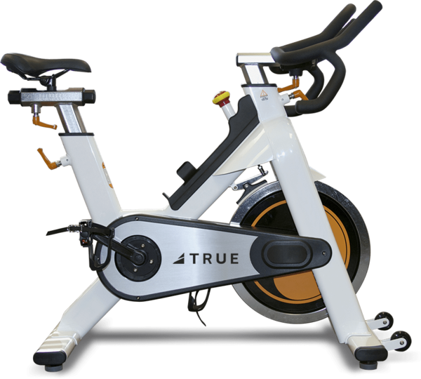 True Fitness Indoor Cycle/Spin Bike