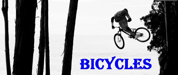 Bikes at Bicycle Depot of Arizona