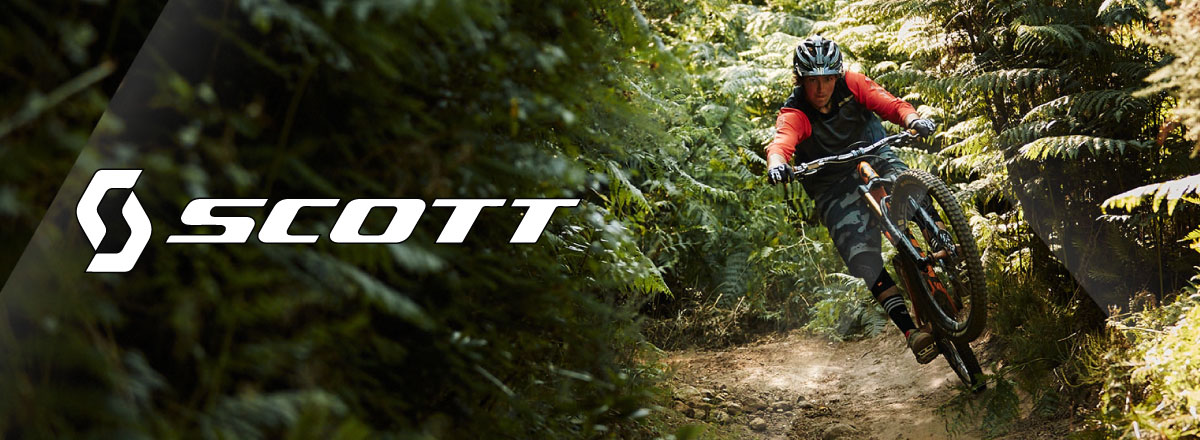 Picture of mountain biker riding wooded through single track