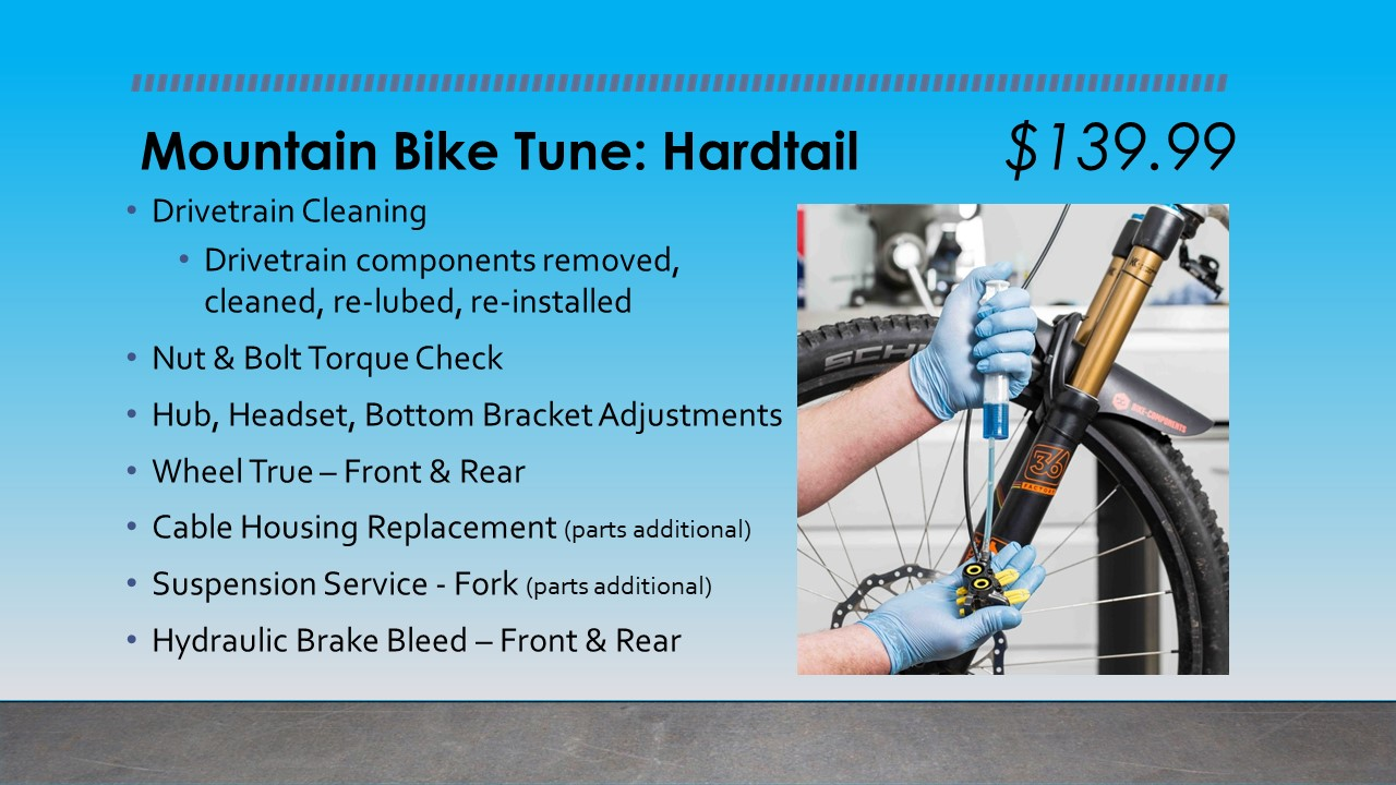 Mountain Bike Tune Up Hardtail