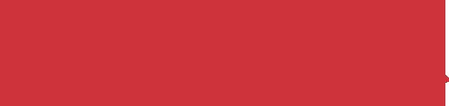 Salsa Cycles Logo