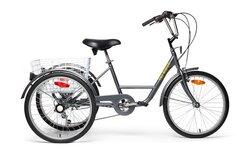Belize Tri Rider Roam Adult Trike