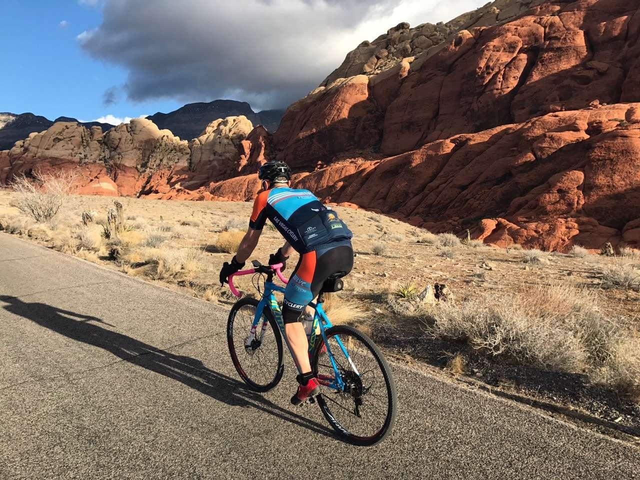 LAS VEGAS Nevada Road Bike MTB Cycling Jersey New size Medium M