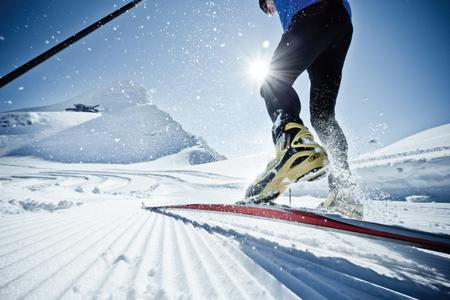 Cross Country Skis Alpine Cycles