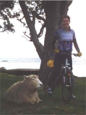 Cyclist in New Zealand