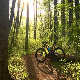 Blue Ridge Cyclery has road, mountain, and fat bikes for rent.