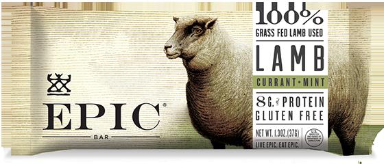 EPIC Bar Lamb Currant Mint