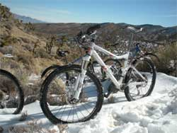 Mountain Bike in snow