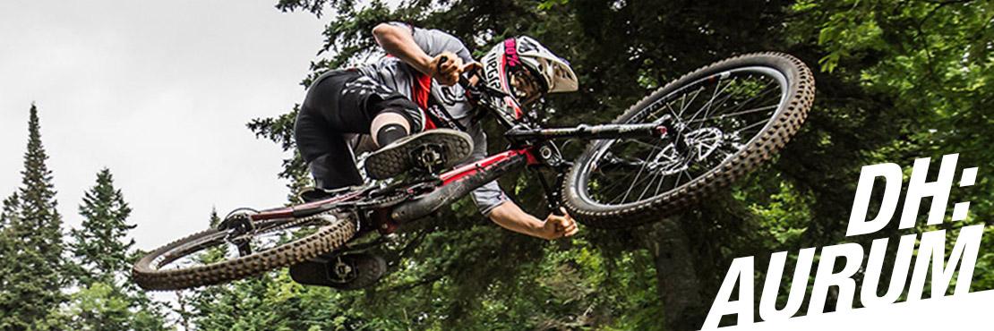 Downhill mountain bike - Norco Aurum Carbon- DH Race