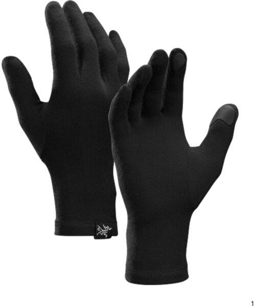 Arcteryx Gothic Gloves