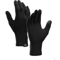 Arcteryx Gothic Gloves