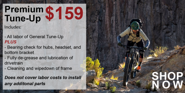 Danny's Cycles Premium Tune-up Package