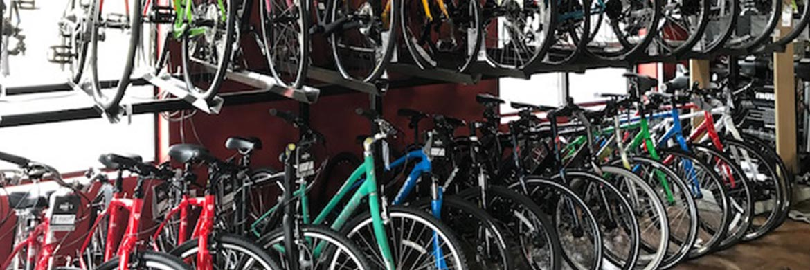 Rye Brook Bike Shop