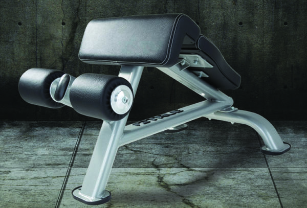True Fitness FORCE Ab Bench