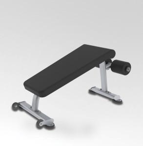 True Fitness Abdominal Crunch Bench