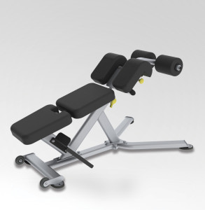 Paramount Fitness Line Low Back/Abdominal Bench