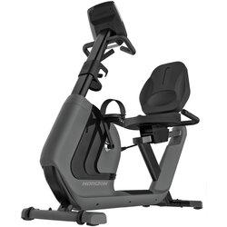 Horizon Fitness Comfort R Recumbent Exercise Bike