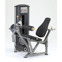 Paramount Fitness Line Leg Extension/Leg Curl