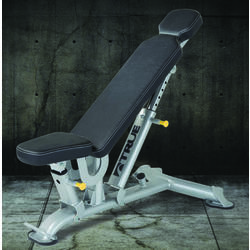 True Fitness FORCE Flat/Incline Bench