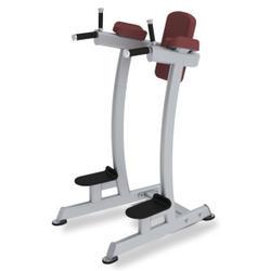 Paramount Fitness Line Vertical Knee Raise/Dip