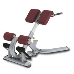 Paramount Fitness Line Roman Bench