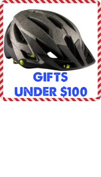 Great gifts under $100.