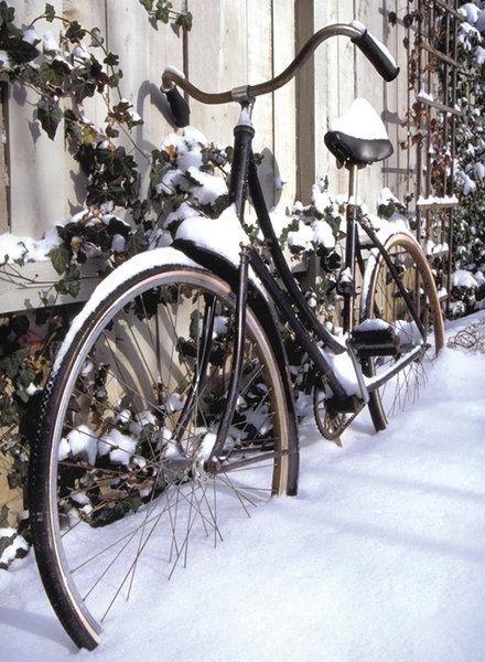 Sweet Pete's Annex Winter Bike Storage