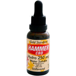 Hammer Nutrition Hammer Hydro CBD Hemp Oil, 250mg, Unflavored